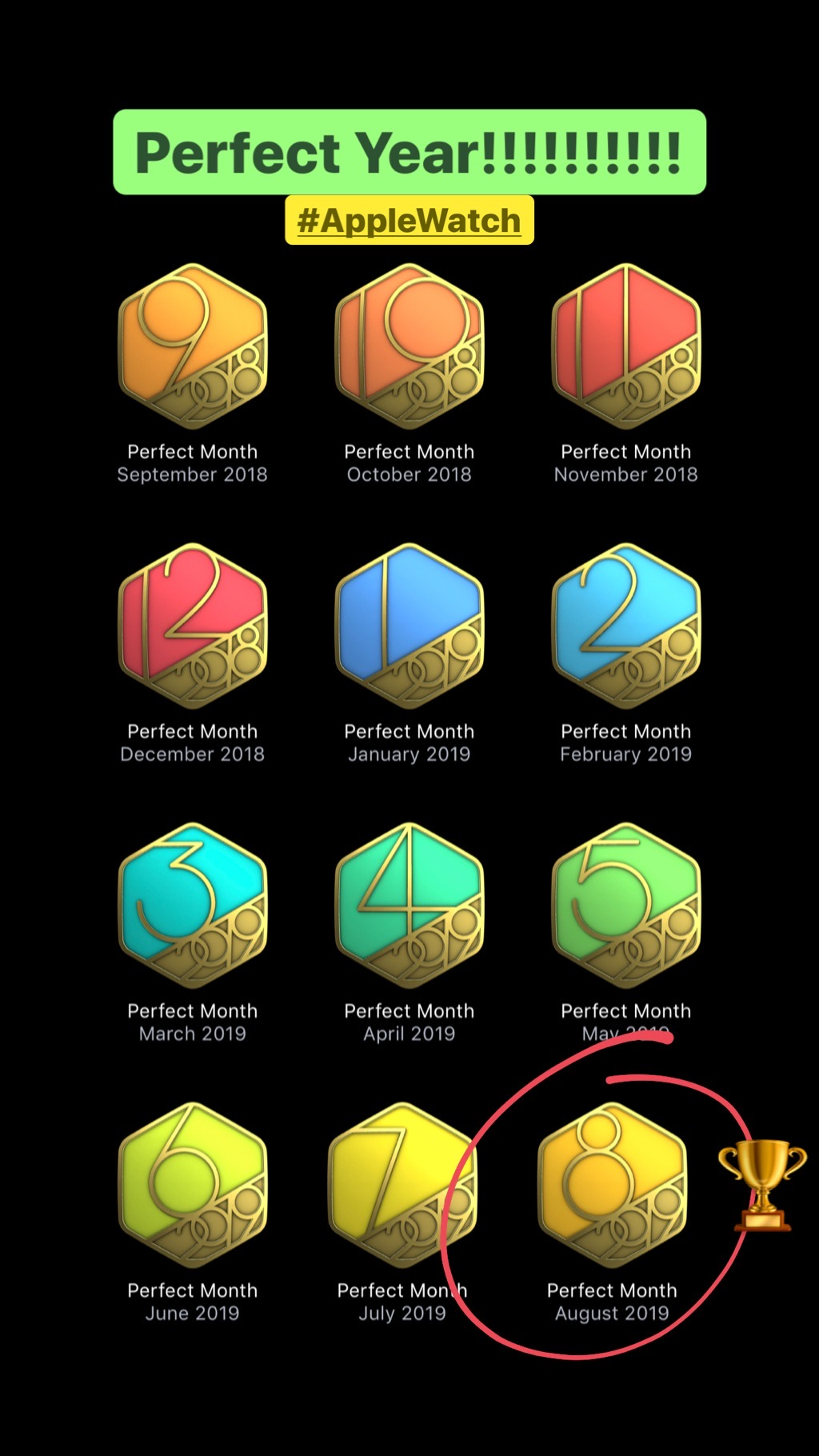 Apple Watch 12 Perfect Month Badges