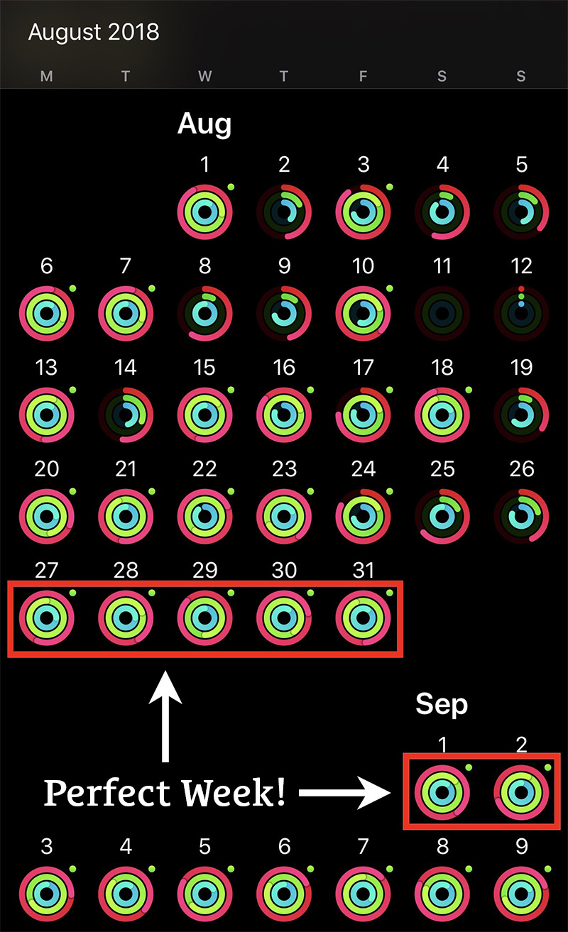 Apple Watch First Perfect Week